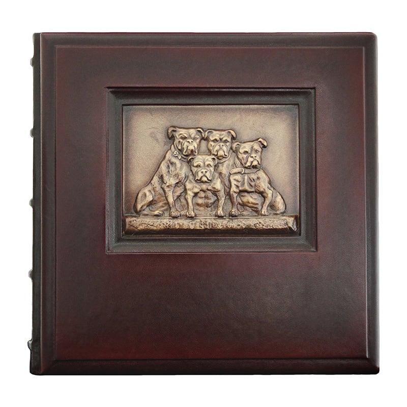 Ексклюзивний фотоальбом Сім'я brown leather