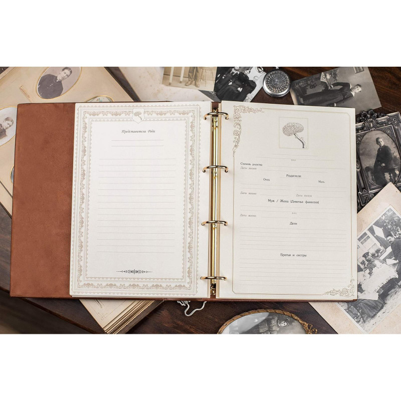 Родословная книга Манускрипт brown leather